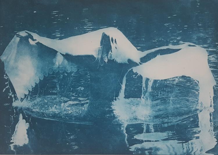 Fotografische ets op Hahnemühle 300 gr papier. 27,5x38,5cm