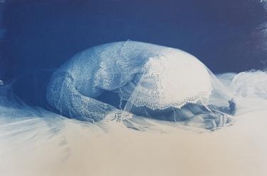 Cyanotypie 27,5 x 39,8 cm